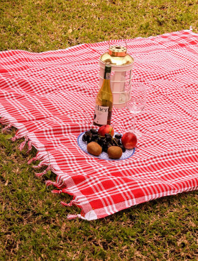 Tablecloth Picnic Banner
